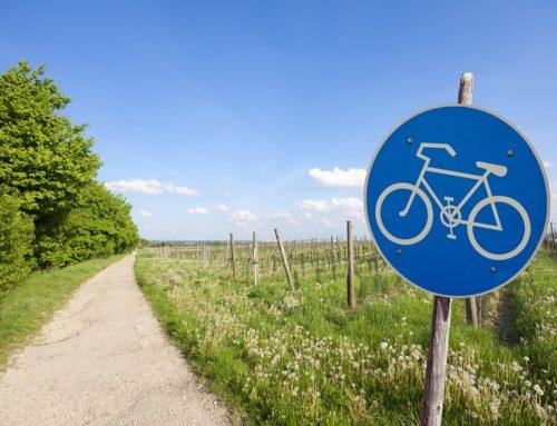Mountainbiken im Wald – Wo gibt es rechtliche Schranken?